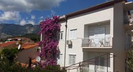 Apartmani Arsenović, Podgora